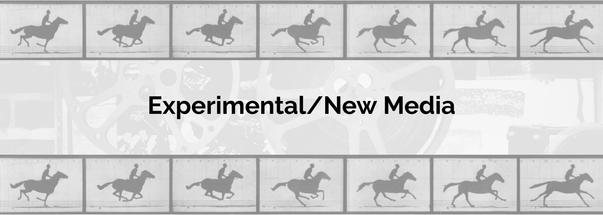 Experimental/New Media